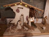 Frohe Weihnachten wünscht Familie Ziegler.