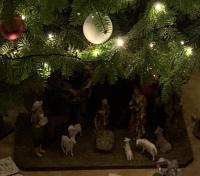 Unterm Christbaum die Krippe von Familie Lasar.