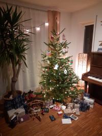 Lewin Schmitt sendet frohe Weihnachtsgrüße.