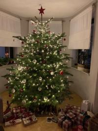 Der strahlend-schöne Christbaum von Familie Lasar.